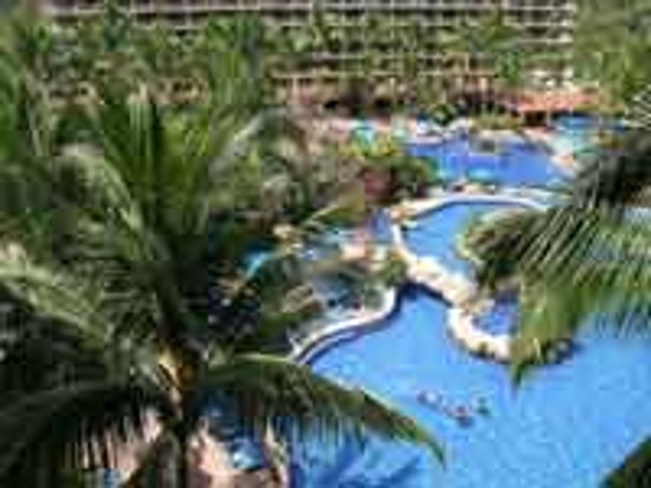 Palms and pools await your family at the Barcelo Puerto Vallarta