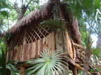 Sandos Playacar lets kids enjoy the nature that surrounds them