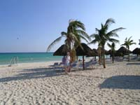 Guest can enjoy a gorgeous beach and gentle waves at the Sandos Playacar Beach Resort