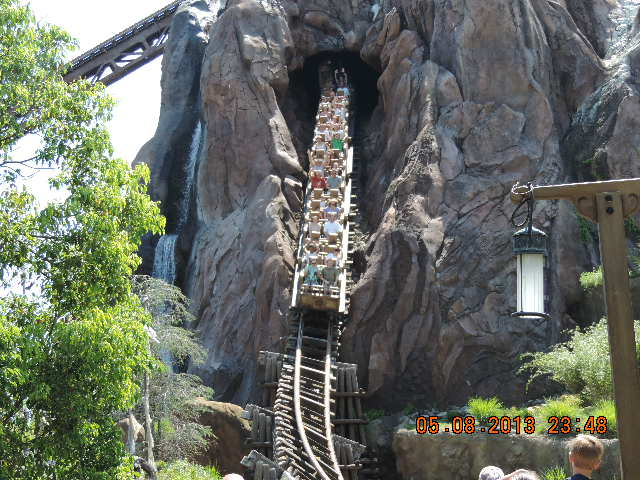 Disney World Roller Coasters