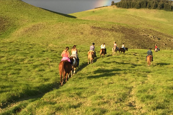 family vacations for horse lovers