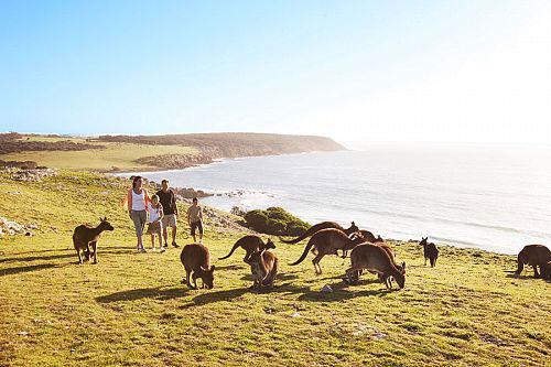 family vacation australia