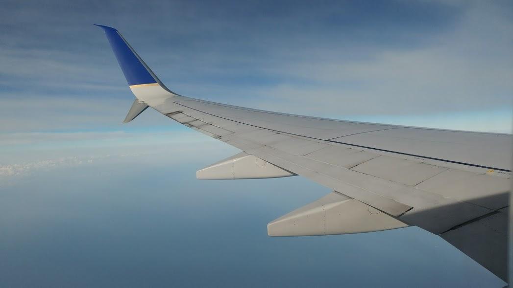 airline wing.jpg